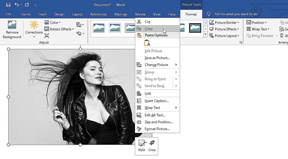 Screenshot showing how to copy image in Microsoft Word